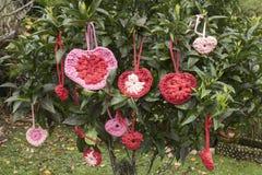 la tarjeta del día de San Valentín del sain adornó el árbol Fotos de archivo