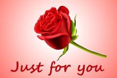 La tarjeta del día de San Valentín se levantó Fotografía de archivo