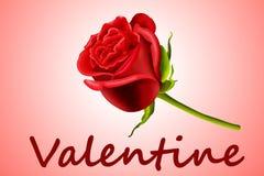 La tarjeta del día de San Valentín se levantó Imágenes de archivo libres de regalías