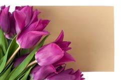 la tarjeta y el sobre en blanco de felicitación con los tulipanes púrpuras sobre blanco aislaron el fondo Imagen de archivo