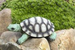 La tartaruga del Faux sulle rocce si avvicina ai tappeti delle piante Fondo paesaggio Immagine Stock