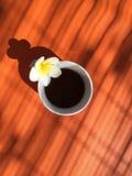 La tasse de café et le frangipani fleurissent sur la table, la terrasse d'été et le café de matin Photo stock