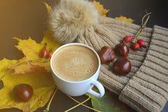 La tasse de feuilles de jaune d'érable de boisson de café a modifié la tonalité la lumière du soleil Photos stock