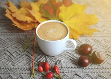 La tasse de feuilles de jaune d'érable de boisson de café a modifié la tonalité la lumière du soleil Photo stock