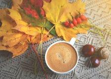 La tasse de feuilles de jaune d'érable de boisson de café a modifié la tonalité la lumière du soleil Photographie stock libre de droits