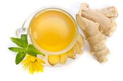 La tasse de thé avec des tranches de gingembre et l'Echinacea fleurissent images libres de droits