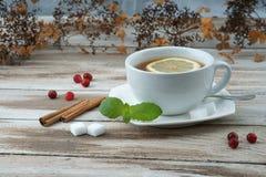 La tasse de thé avec la canneberge et la menthe poussent des feuilles Photographie stock