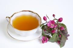 La tasse de thé avec la pomme rose fleurit sur le fond blanc Images libres de droits