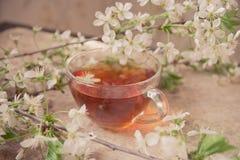 La tasse de thé noir avec la fleur de ressort s'embranche sur le vieil en bois Images stock