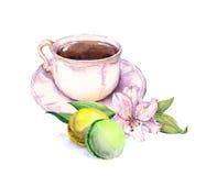 La tasse et soucoupe de vintage avec le thé ou le café, macaron durcit, fleur watercolor Photographie stock