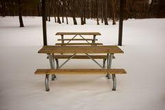 La tavola e le sedie di picnic di legno nell'inverno nevicano Immagini Stock Libere da Diritti