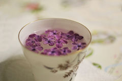La taza borrosa con la lila florece en colores retros del mantel Imagen de archivo libre de regalías