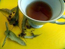 La taza con té de las flores de la cal y del tilo secado florece con las hojas Foto de archivo libre de regalías