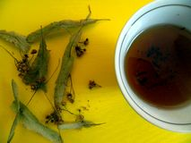 La taza con té de las flores de la cal y del tilo secado florece con las hojas Fotos de archivo libres de regalías
