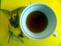La taza con té de las flores de la cal y del tilo secado florece con las hojas Imagen de archivo libre de regalías