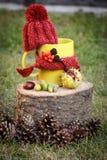 La taza de bebida con el casquillo de lana envolvió la bufanda en tocón de madera Imágenes de archivo libres de regalías