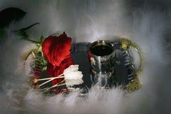 La taza de café y de rojo se levantó Fotos de archivo libres de regalías