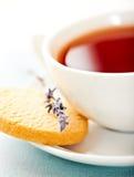 La taza de té con la galleta y la lavanda florecen Imagenes de archivo