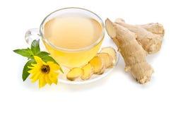 La taza de té con las rebanadas del jengibre y el Echinacea florecen Fotos de archivo libres de regalías