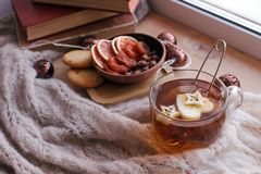 La taza de té con la manzana, hace punto una manta, frutos secos y los libros en el travesaño de la ventana, concepto de fin de s imágenes de archivo libres de regalías