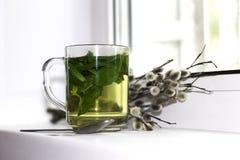 La taza de té de la menta con una pequeña cuchara se coloca Fotos de archivo