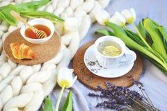 La tazza con il tè della lavanda, l'agrume ed il miele, croissant, gigante pastello bianco tricotta la coperta fotografia stock libera da diritti