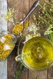 La tazza del tè di camomilla con la camomilla asciutta fiorisce Fotografia Stock