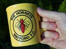La tazza della porcellana del ricordo del club di calcio di Watford dei calabroni tenuta a disposizione fotografia stock