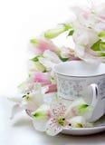 La tazza di tè fotografie stock libere da diritti
