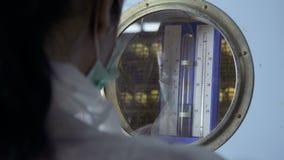 La température de contrôle d'inspecteur à l'intérieur de l'incubateur à la ferme avicole clips vidéos
