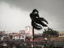 La tempête Photographie stock