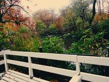 La temporada de otoño está aquí Imágenes de archivo libres de regalías