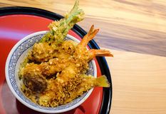 La tempura indossa o tendine fotografia stock libera da diritti
