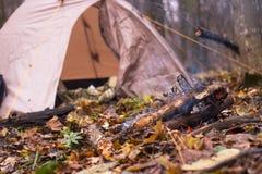 La tenda è nella foresta di autunno Fotografia Stock