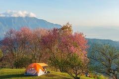 La tenda di campeggio in campeggio sopra la montagna con l'alba a fa Fotografie Stock Libere da Diritti