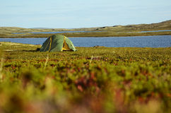 La tenda nell'Artide Immagini Stock Libere da Diritti