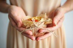 La tenencia de la muchacha apoyó manzanas con las nueces y la miel en un pergamino Foto de archivo
