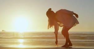 La tenencia de la mujer secó la planta en la playa 4k almacen de metraje de vídeo