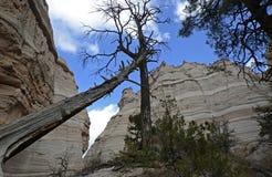 La tente de Kasha-Katuwe bascule le monument national, Nouveau Mexique, Etats-Unis Photos libres de droits