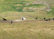 La tente du berger Photographie stock