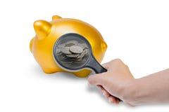 La tenuta che della mano la lente d'ingrandimento è splende la moneta nelle pance di carne di maiale su fondo bianco Immagine Stock