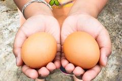La tenuta della mano dei bambini eggs l'azienda agricola di pollo Immagine Stock Libera da Diritti