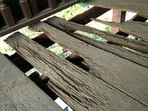 La termita come la madera Imágenes de archivo libres de regalías
