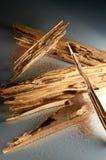 La termite ha infestato Fotografia Stock Libera da Diritti