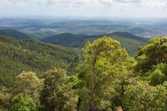 La terra collinosa e vasta nella provincia dell'Alentejo, Portogallo fotografia stock libera da diritti
