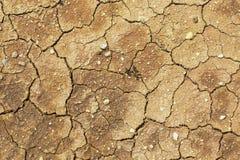 La terra incrinata, terra nella siccità, nella struttura del suolo ed in fango asciutto, Immagini Stock