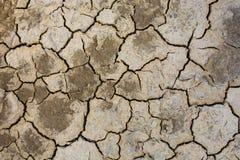 La terra secca a causa della caduta della dose della pioggia non e della terra mancava di dell'acqua per l'agricoltura Immagini Stock Libere da Diritti