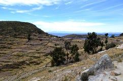 La terraza coloca - el cultivo en Isla del Sol, el lago Titicaca Perú Fotografía de archivo libre de regalías