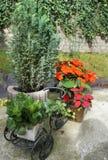 La terraza hermosa con mucho florece y bicicleta Fotos de archivo libres de regalías