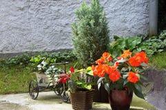 La terraza hermosa con mucho florece y bicicleta Imagen de archivo